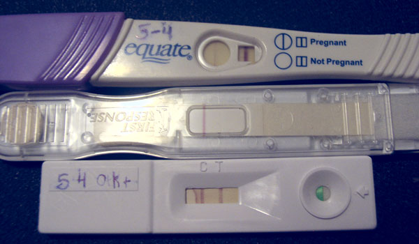 Equate Pregnancy Test Results Pictures http://www.jenrose.com/hpt/hpt.htm